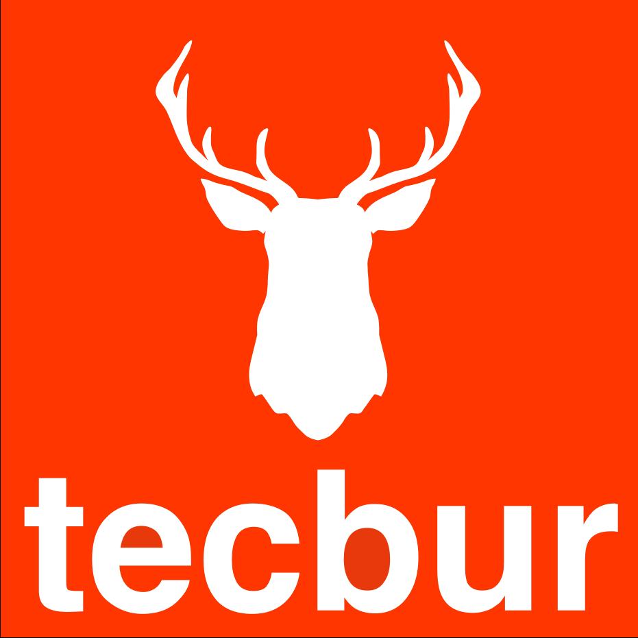 Tecbur, expertos en calderas